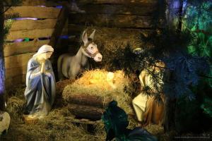 Szopka bożonarodzeniowa 2017